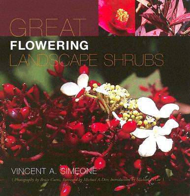 Great Flowering Landscape Shrubs By Simeone, Vincent A./ Curtis, Bruce (PHT)/ Coe, Michael D. (FRW)/ Dirr, Michael A. (INT)